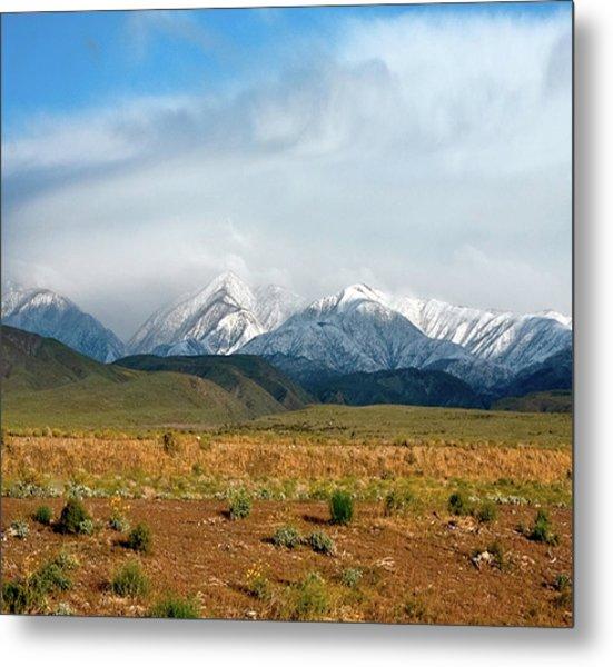 California Desert Landscape Metal Print