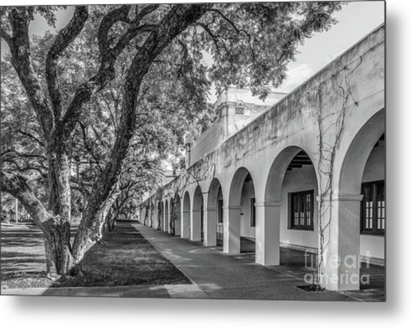 California Institute Of Technology Campus Trees Metal Print by University Icons