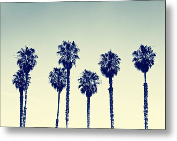 California Palm Trees Metal Print