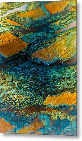 California Pine Bark Abstract Metal Print