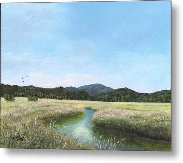 California Wetlands Metal Print