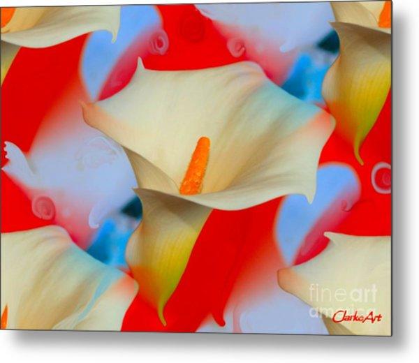 Splashy Calla Lilies Metal Print
