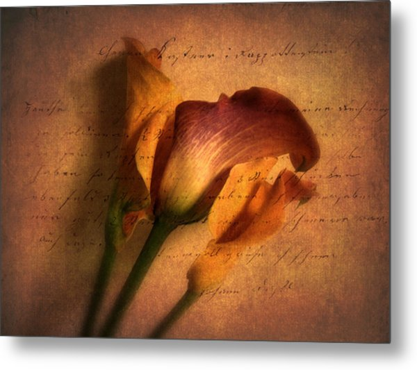 Callas By Candlelight Metal Print