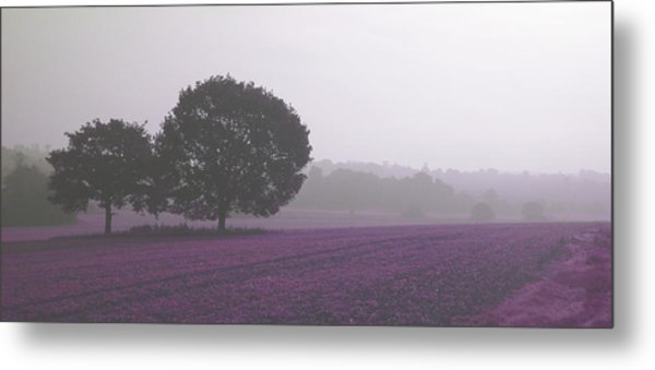 Calm Autumn Mist Metal Print