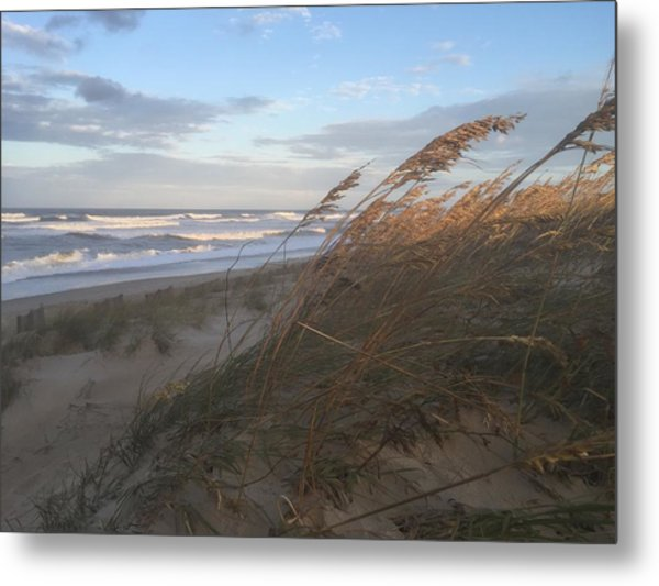 Calm Before The Storm Metal Print by Nicki Clark