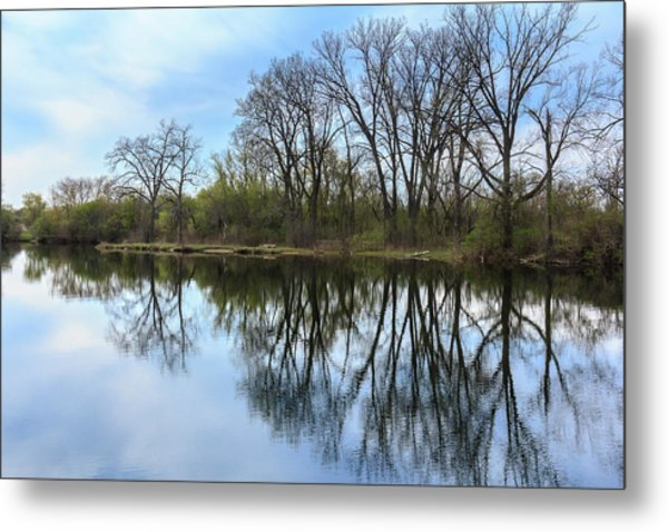 Calm Waters At Wayne Woods Metal Print