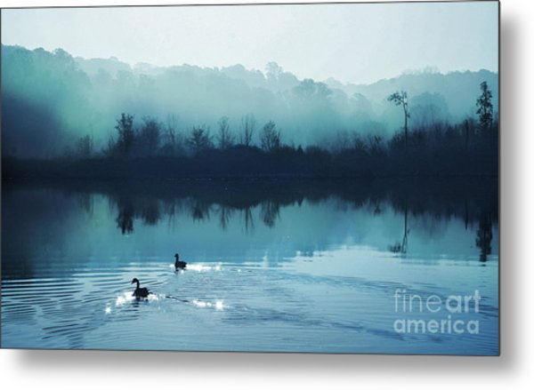 Calming Water Metal Print by Gina Signore