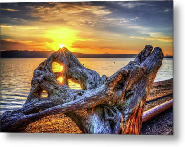 Camano Sunrise Metal Print