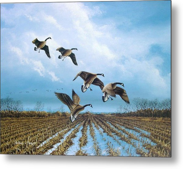 Canadian Cold Front Metal Print