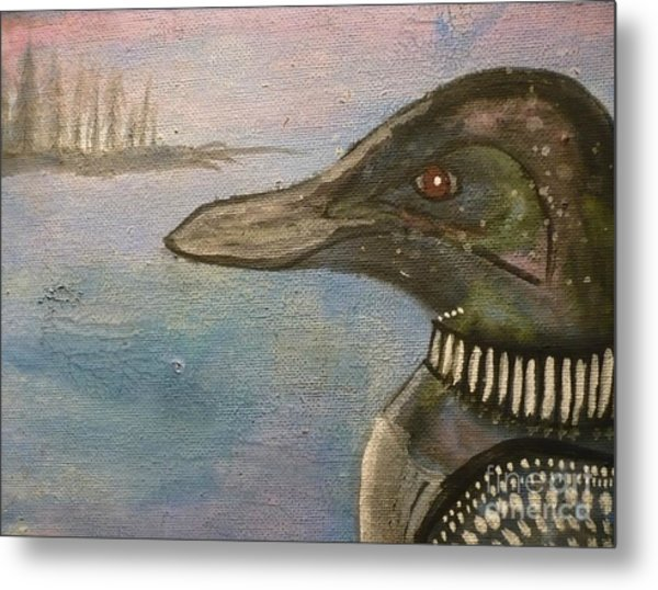 Canadian Loon Metal Print