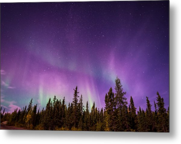 Canadian Northern Lights Metal Print
