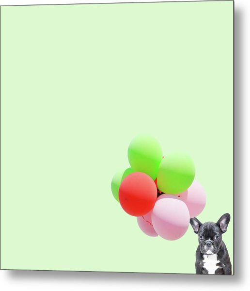 Candy Dog Metal Print