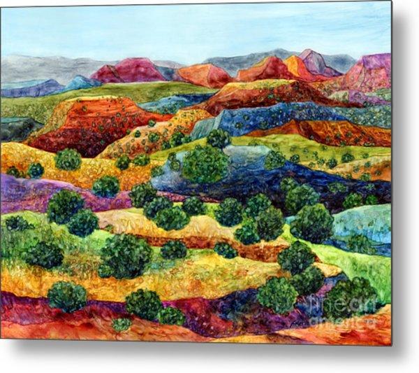 Canyon Impressions Metal Print