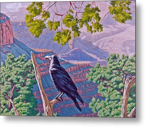 Canyon Jester Metal Print