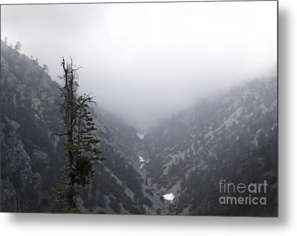 Canyon Metal Print by Viktor Savchenko