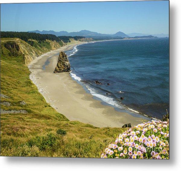 Cape Blanco On The Oregon Coast By Michael Tidwell Metal Print