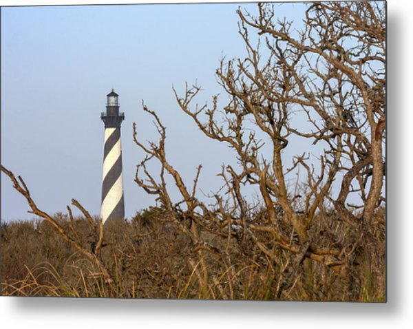 Cape Hatteras Lighthouse Through The Brush Metal Print