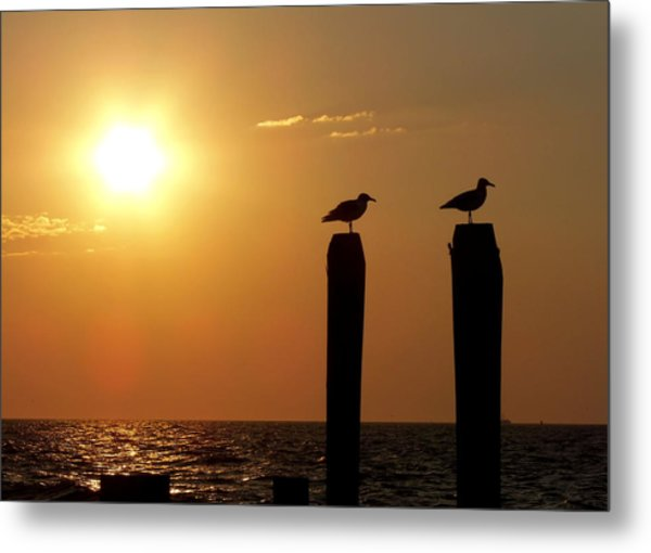 Cape May Morning Metal Print by JAMART Photography