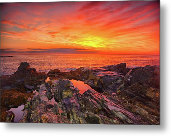 Cape Neddick Sunrise Metal Print