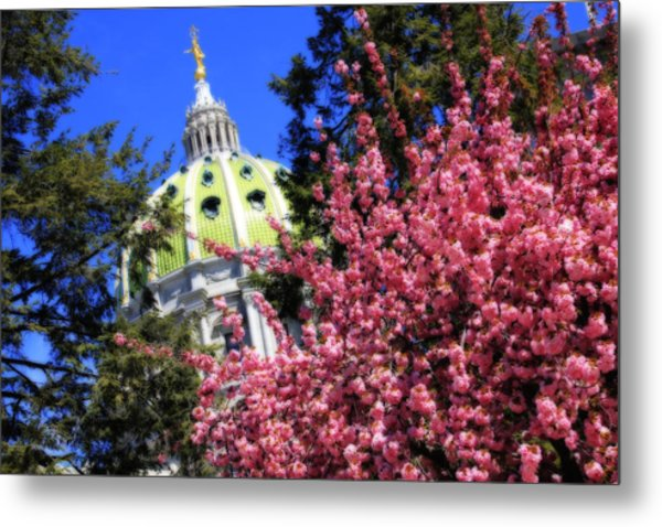 Capitol In Bloom Metal Print