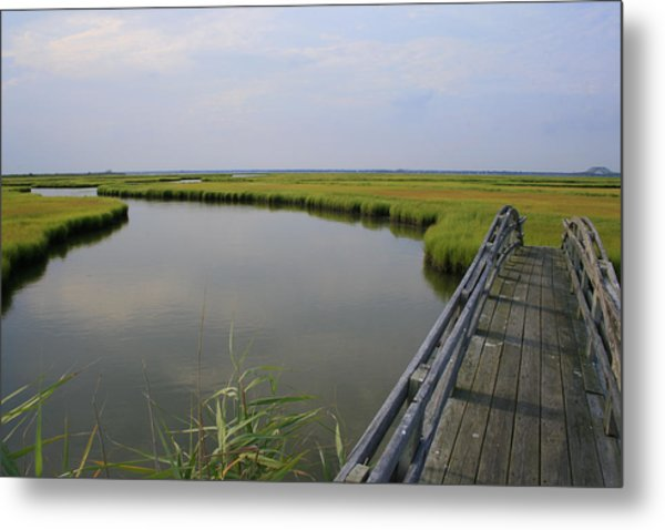 Captree Wetlands Foot Bridge Metal Print