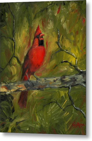 Cardinal Metal Print by Liz Rose