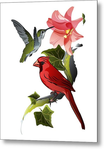 Cardinal On Ivy Branch With Hummingbird And Pink Lily Metal Print