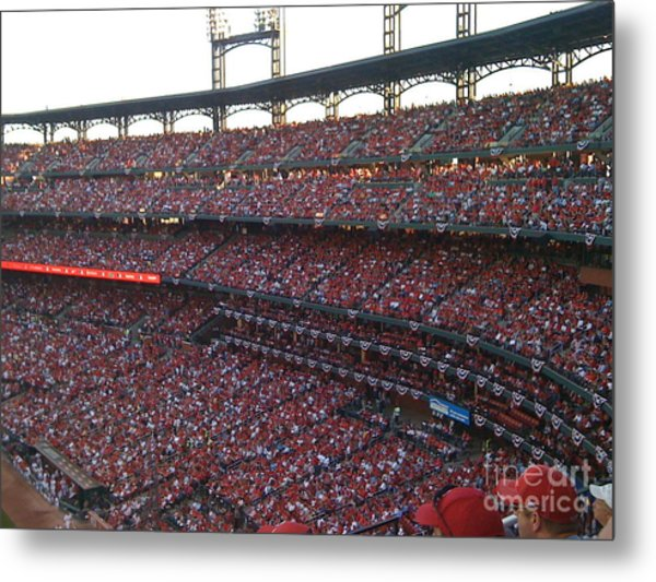 Cardinals Red Metal Print