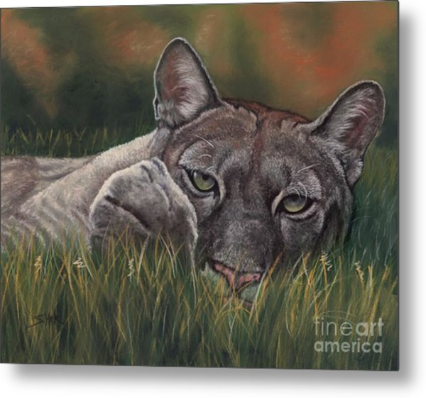 Carez...i Has None Metal Print