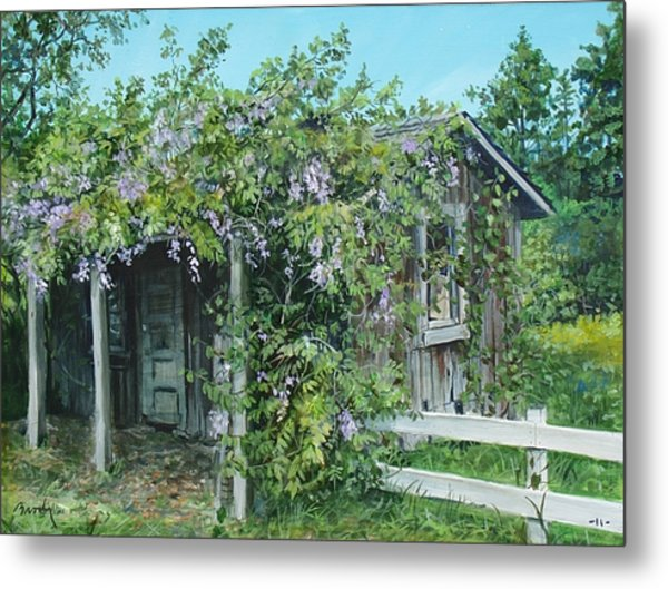 Carl's Shed Metal Print