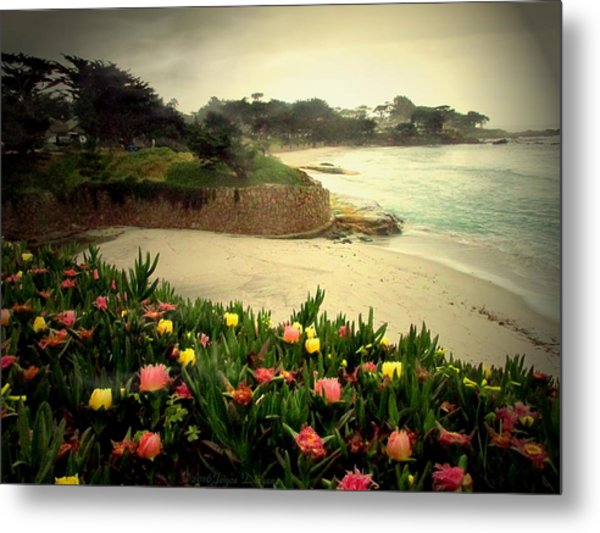 Carmel Beach And Iceplant Metal Print