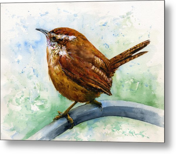 Carolina Wren Large Metal Print