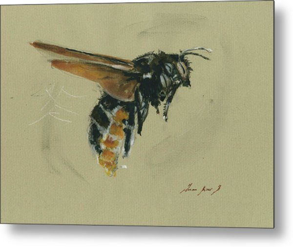 Carpenter Bee Metal Print