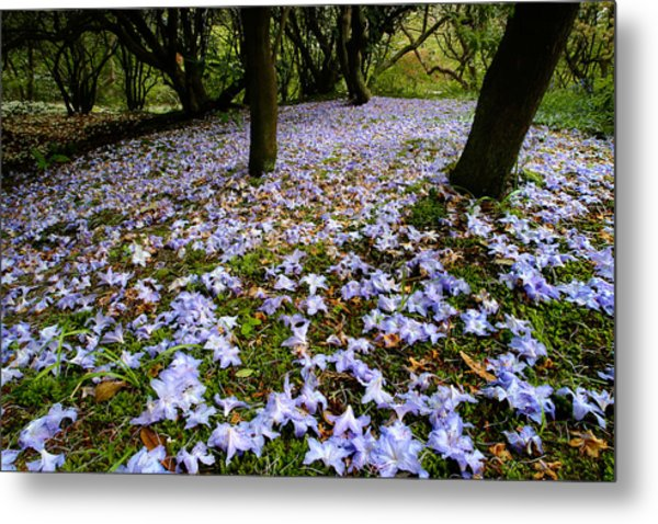 Carpet Of Petals Metal Print