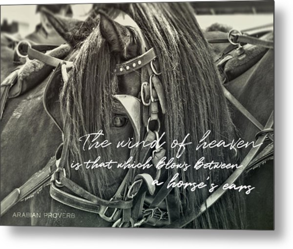Carriage Horse Quote Metal Print