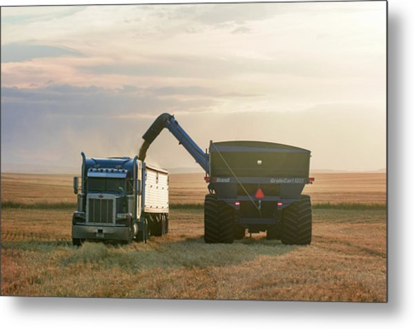 Cart Into Truck Metal Print