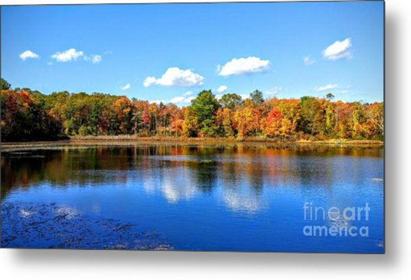 Carver Pond Bridgewater Ma Metal Print