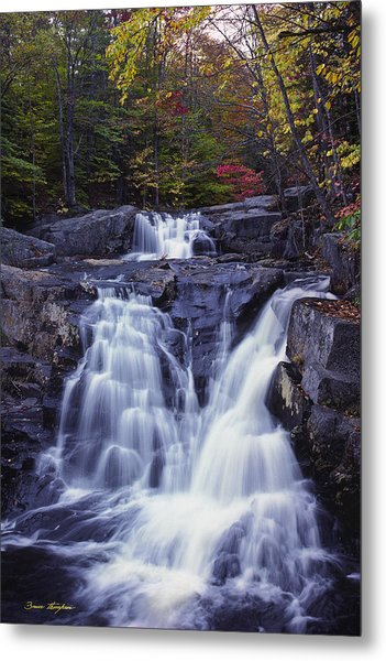 Cascades In Autumn Metal Print
