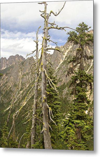 Cascades Tree Metal Print