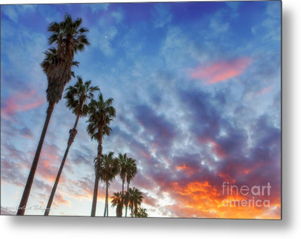 Casitas Palms Metal Print