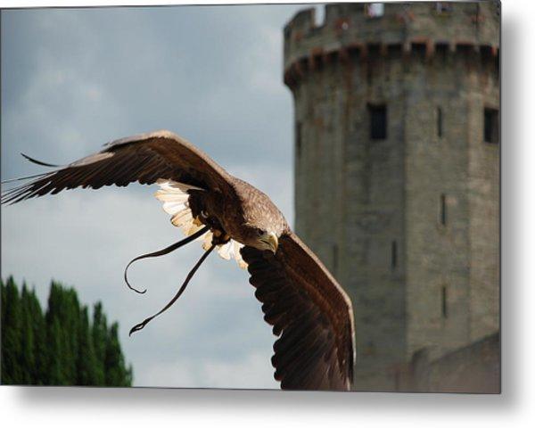 Castle And Eagle Metal Print by Irum Iftikhar