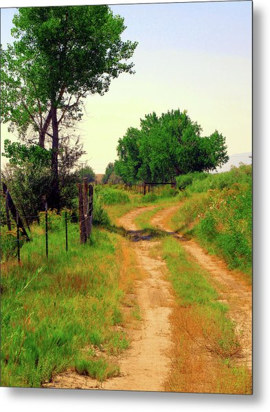 Castledale Farm Road Metal Print