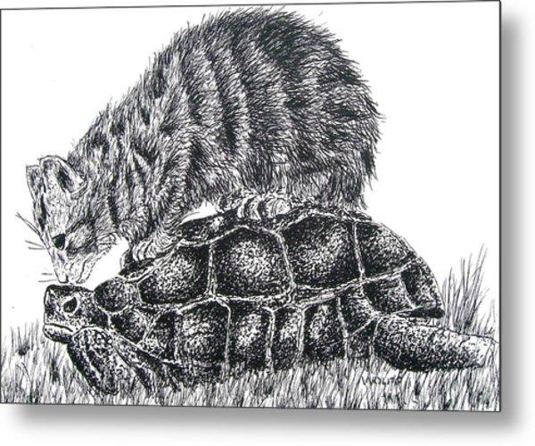 Cat And Turtle Metal Print