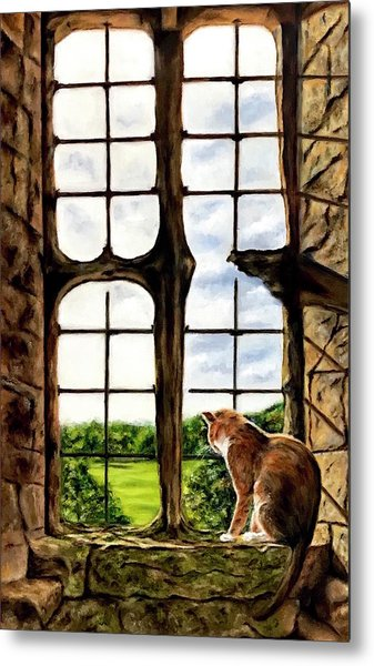 Cat In The Castle Window-close Up Metal Print