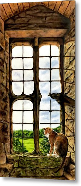 Cat In The Castle Window Metal Print