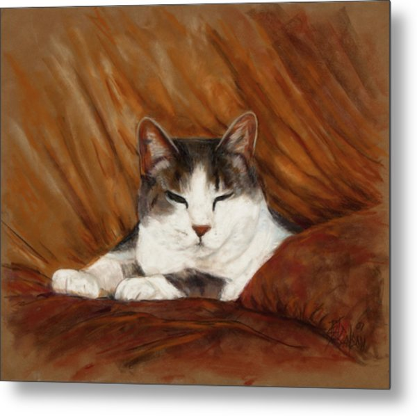 Cat Nap Metal Print by Billie Colson
