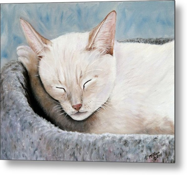 Cat Nap Metal Print by Merle Blair
