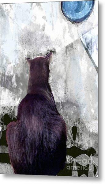 Cat's Blue Moon Metal Print