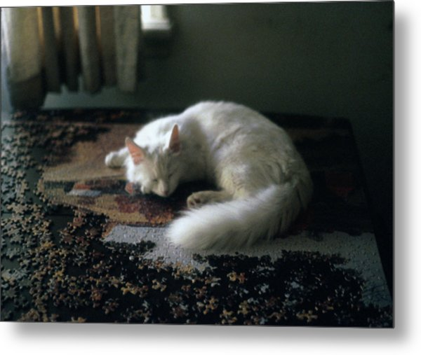 Cat On A Puzzle Metal Print
