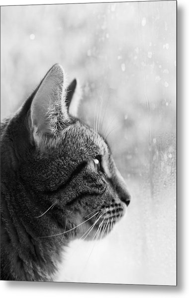 Waiting... Metal Print